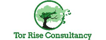 Landing Logo - Torrise Consultancy.fw